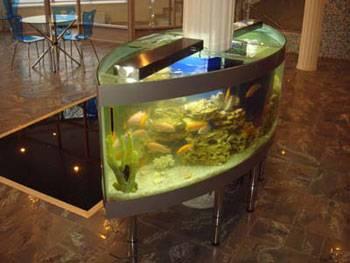Закажите аквариум в Брянске